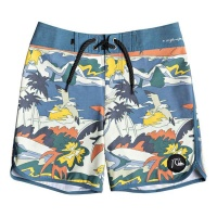 quiksilver_boys_boardshort_highline_feelin_fine_youth_15_stellar_1