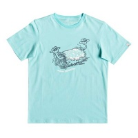 t_shirt_quiksilver_boys_wasup_braddah_youth_aqua_splash_1