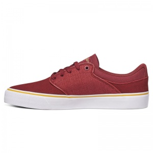dc_shoes_mikey_taylor_vulc_maroon_3