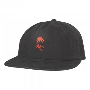 globe_scorpio_cap_washed_black_1