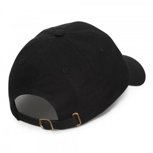 penny_cap_calvin_dad_hat_black_2