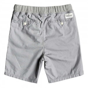 quiksilver_boys_shorts_seaside_coda_ws_youth_sleet_2