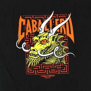 tshirt_powell_peralta_cab_steet_dragon_black_4
