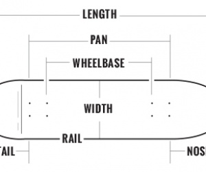 Caratteristiche della Tavola da Longboard